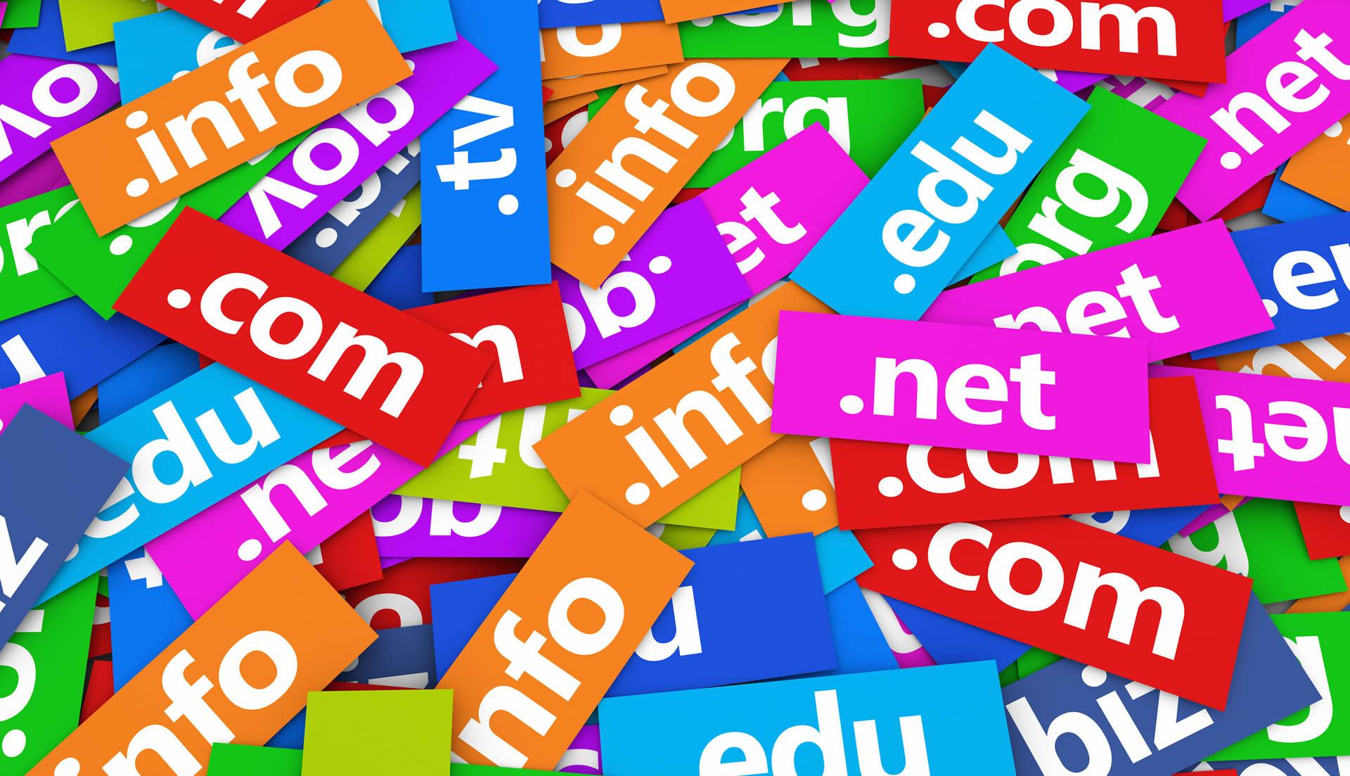 Portfolio registrazione domini